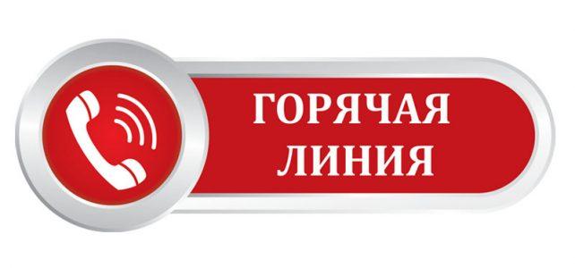 III краевая «ГОРЯЧАЯ ЛИНИЯ».